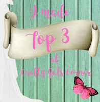 top2b3